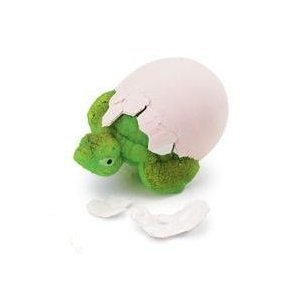 Tortoise Hatch 'Ems Egg