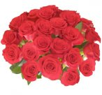 Flower Delivery - 25 Giant, Long Stem Red Roses From Spring in the Air Luxury Roses
