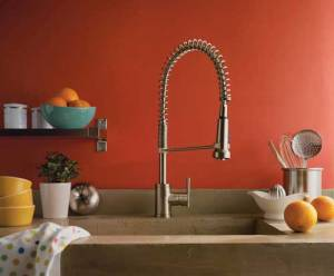 Danze D455158SS Parma Single Handle Pre-Rinse Faucet, Stainless Steel