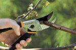 Fiskars Traditional Bypass Pruning Shears (91095935J)