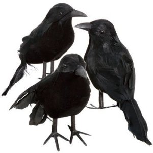 Black Feathered Small Halloween Crows - 3 Pc Black Birds
