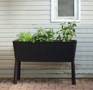 Keter Elevated Planter Box