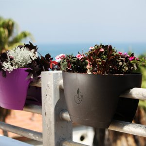 Greenbo XL Designer Rail and Deck Window Box Planter - Set of 2