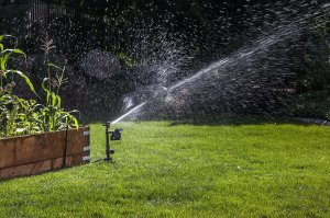 Orbit 62100 Yard Enforcer Motion Activated Sprinkler