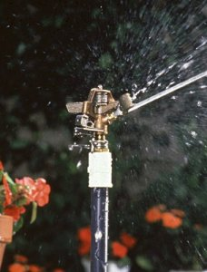 Rain Bird 25PJDAC Brass Impact Sprinkler, Adjustable 0° to 360° Pattern, 20' - 41' Spray Distance