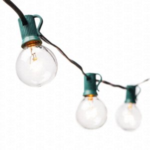 G40 Globe String Lights with 25 Clear Bulbs by Deneve® - UL Listed Commercial Quality String Lights Perfect for Indoor  Outdoor Use - 3-YEAR 100% Satisfaction Guarantee on Light String! (Green)